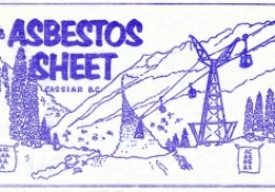 The Asbestos Sheet Newspaper